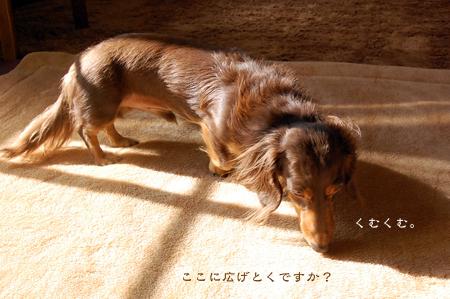 200811127.jpg
