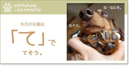 shiritori20090213.jpg