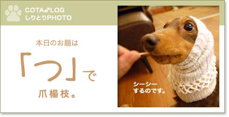 shiritori20090330.jpg