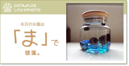 shiritori20090607.jpg