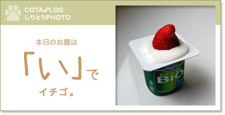 shiritori20090702.jpg
