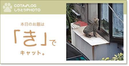 shiritori20090710.jpg