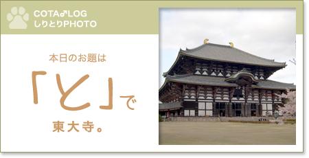 shiritori20090715.jpg
