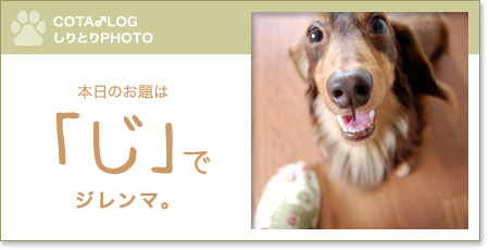 shiritori20090716.jpg