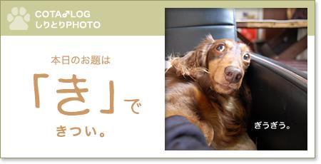 shiritori20090803.jpg