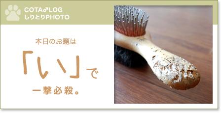 shiritori20090804.jpg