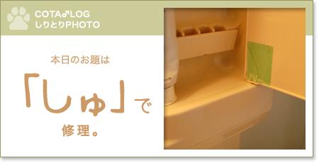 shiritori20090813.jpg