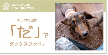 shiritori20090819.jpg