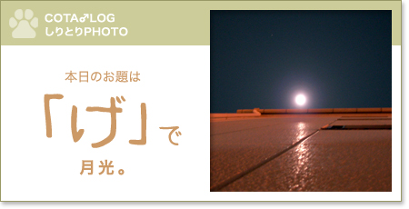 shiritori20090823.jpg