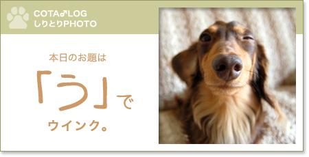 shiritori20090824.jpg