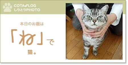 shiritori20090901.jpg