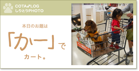 shiritori20090927.jpg