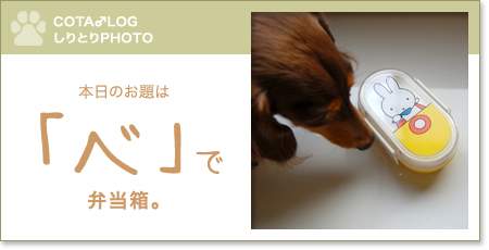 shiritori20091226.jpg