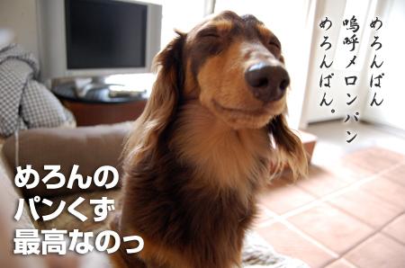 201005289.jpg