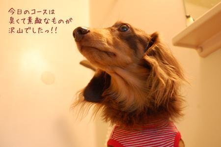 2011111504.jpg