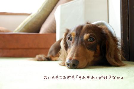 2011112405.jpg
