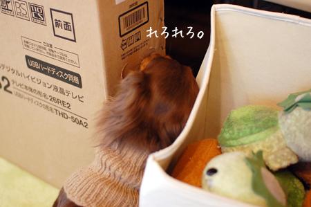 2011120809.jpg