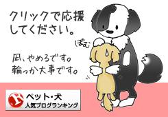 人気ブログランキング|犬