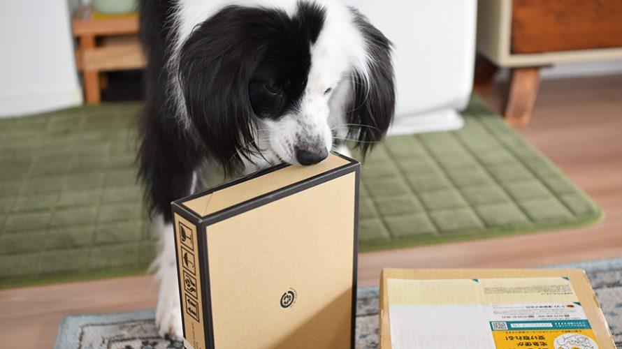 なぎろぐ ブログ犬